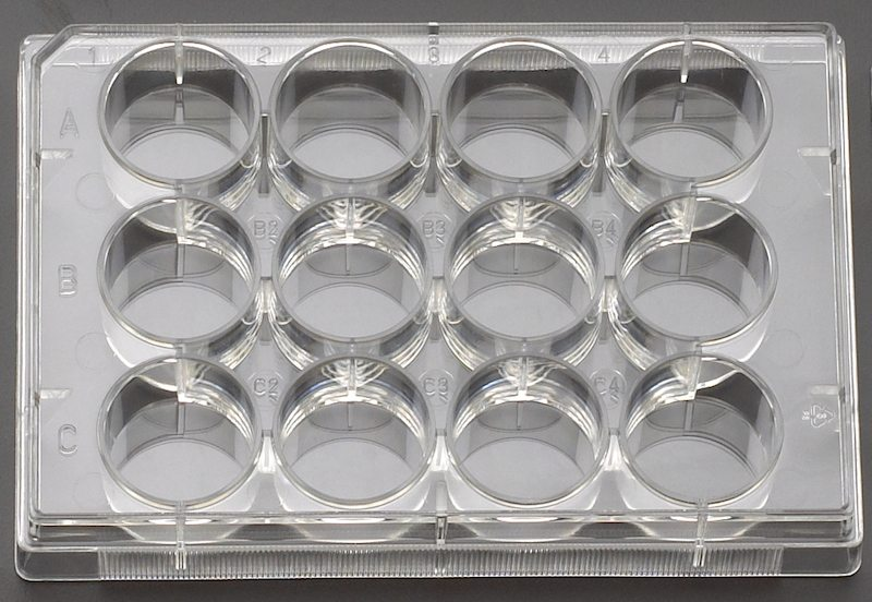 Celltreat untreated 12 well cell culture plates 229512