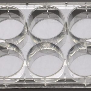 Celltreat 6 well cell culture plates 229106