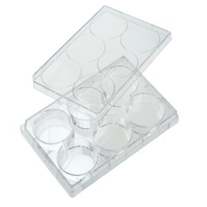 Celltreat 6 Well Cell Culture Plates 229105 229106