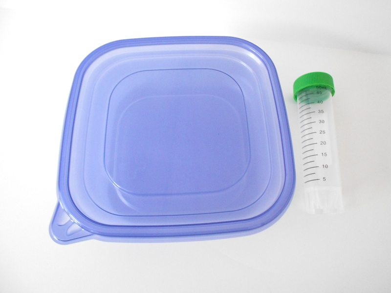 Disposable Polypropylene Containers