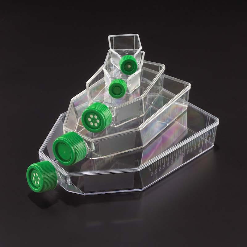 Celltreat T25 Suspension Culture Flasks 50 mL 229510