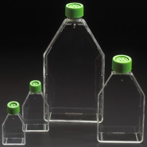 Tissue Culture Treated Flasks