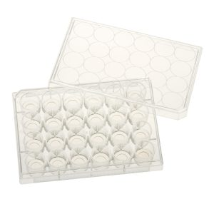 Celltreat 24 Well Glass Bottom Cell Culture Plates 229125