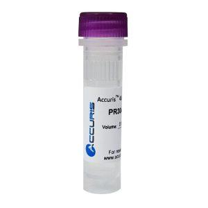Accuris 40 mM dNTP Mix PR3040-M-1 PR3040-M-4