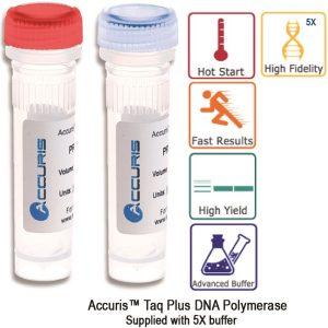 Accuris Taq Plus DNA Polymerase PR1000-TP
